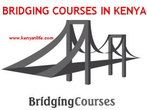 Bridging Courses Kenya - Business Administration, Community Development, Social Studies, Information Technology, Procurement, Supply Chain Management, Accounting, Business Management, French, Computer Studies, Spanish, Chinese, German