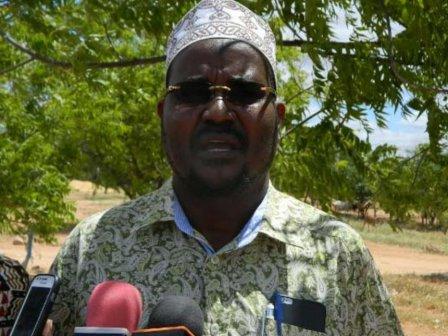 Ali Wario