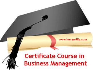 Colleges, Schools and Universities offering Certificate Course in Business Management, Nairobi County, Nakuru, Mombasa, Kisumu, Nyeri, Embu, Meru, Garissa, Kisii, Eldoret, Thika, Kiambu, Muranga,