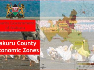 Economic Activities in all Constituencies in Nakuru County