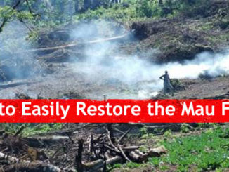 How to Easily Restore Mau Forest and other Water Towers in Kenya. Mau Forest Complex, The Mount Kenya, The Aberdares, The Cherangani Hills and Mt. Elgon