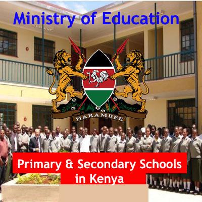 Private Primary Schools in Kenya, Primary Schools in Kenya